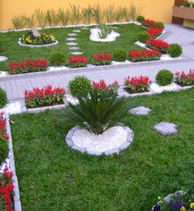 jardin con flores y plantas rojas