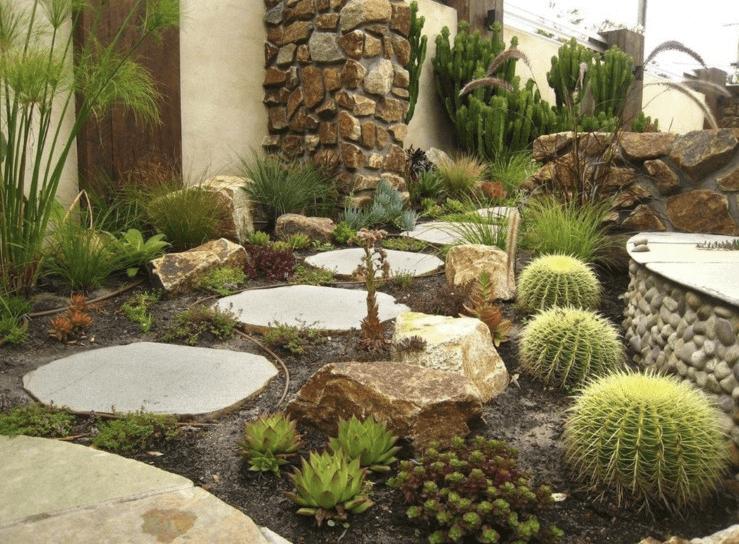 diseño de jardín de secano