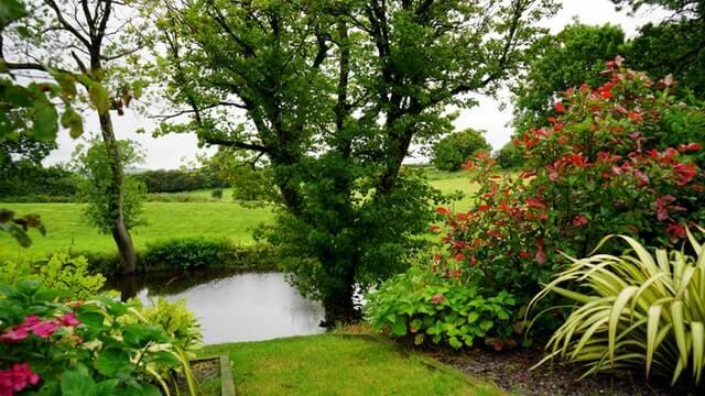 5 Consejos para mantener el Jardín bien cuidado