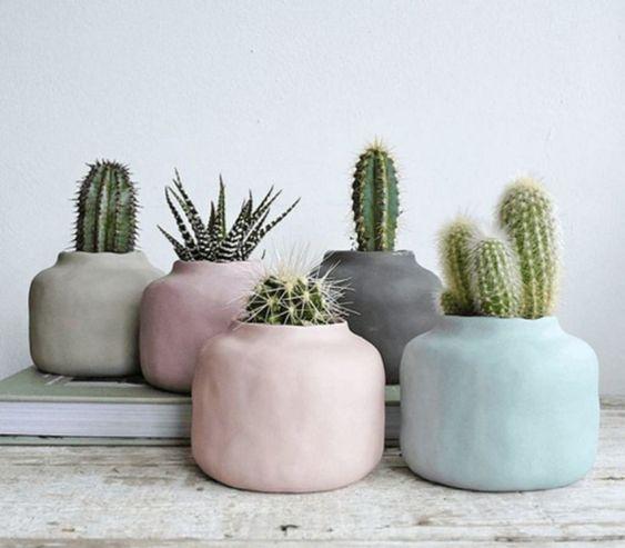 plantas de invierno