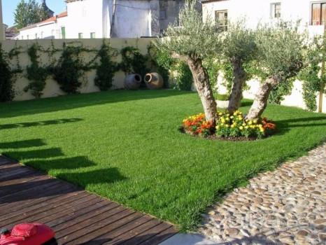 diseño de jardines sotenibles