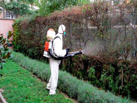 tratamientos fitosanitarios jardines