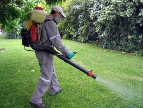 tratamientos para jardines