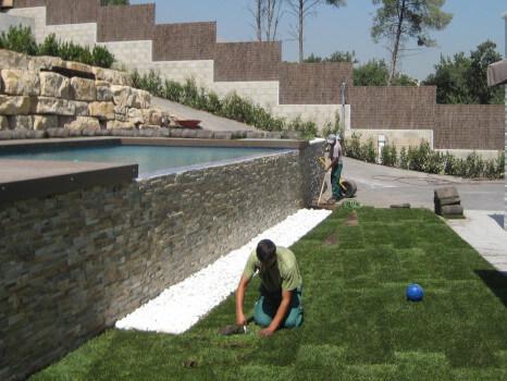 mantenimiento césped jardín