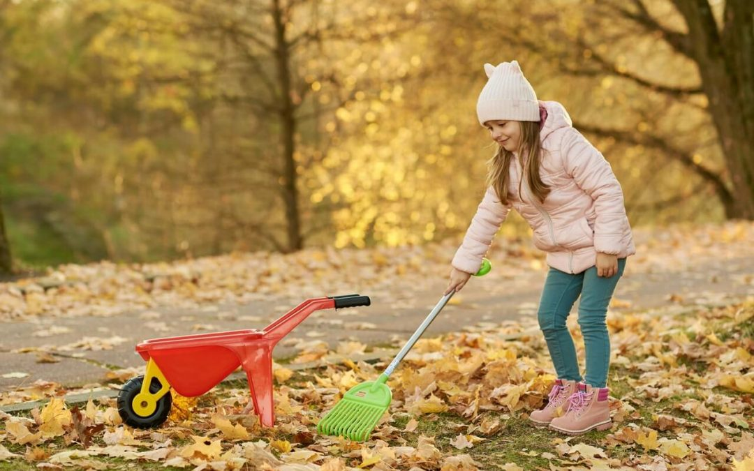 Consejos de Otoño: cómo recoger las hojas del jardín