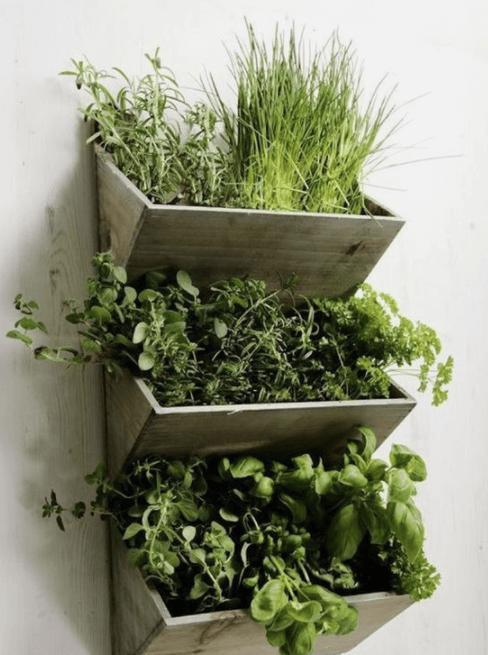 macetas verticales para jardines pequeños