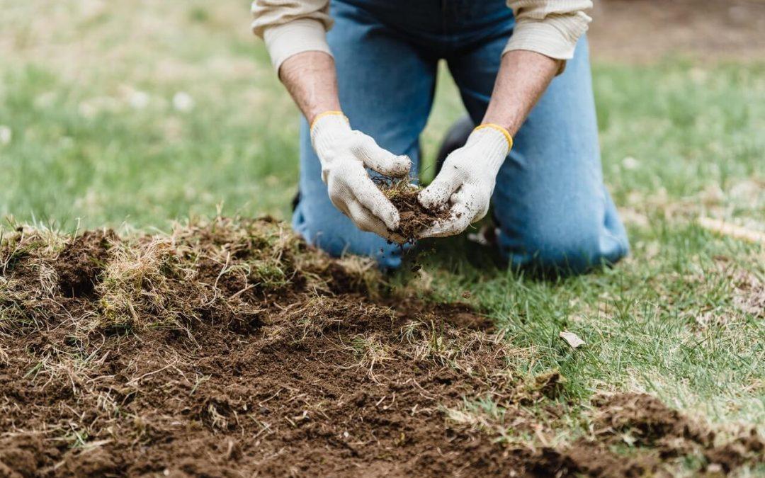 ¿Qué incluye el mantenimiento de jardines?