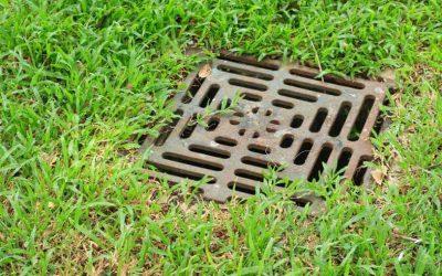 La importancia de limpiar el sistema de drenaje del jardín